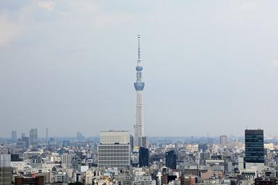 文京シビックセンターから見た東京スカイツリー