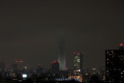 東京スカイツリー夜景「冬雅」