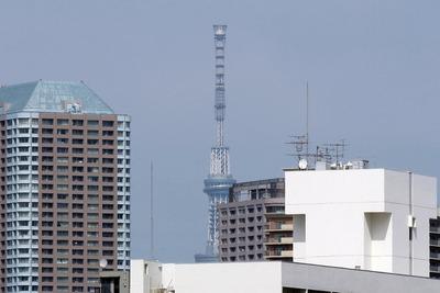 中央清掃工場から見た東京スカイツリー