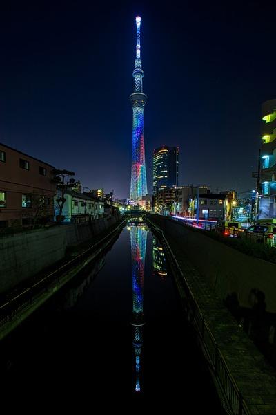 Nizi(虹)をイメージした特別ライティングの逆さツリー