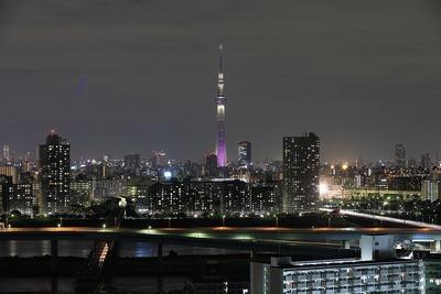 東京スカイツリー夜景「雅」
