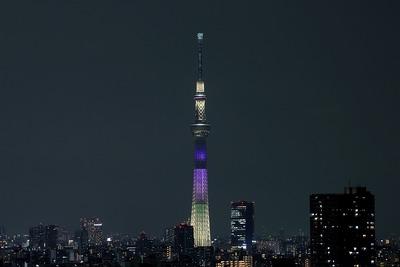 東京スカイツリー夜景「明花:ラベンダー」