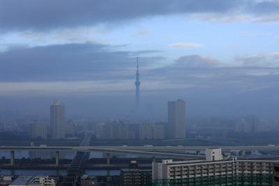 朝靄の東京スカイツリー