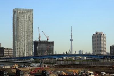豊洲新市場と東京スカイツリー