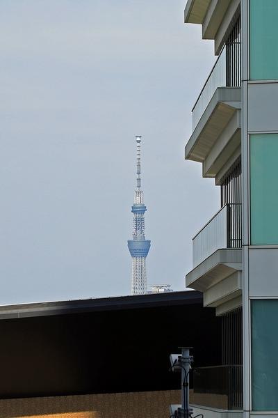東京ポートシティ竹芝オフィスタワーから見えた東京スカイツリー