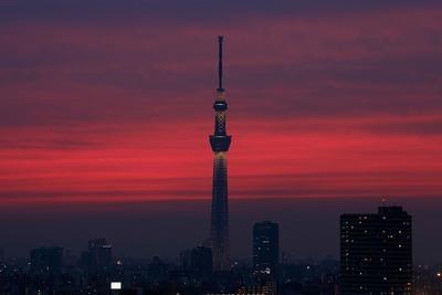 真っ赤に焼けた東京スカイツリー
