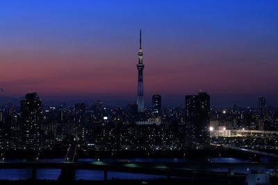 東京スカイツリー夜景「ホワイトショコラ」