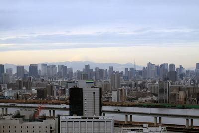 富士山・東京タワー方面の眺め
