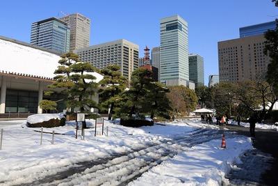 雪の皇居東御苑から見た大手町の超高層ビル群