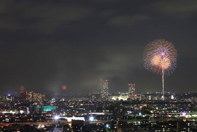 市川&江戸川花火大会とどっかの花火大会