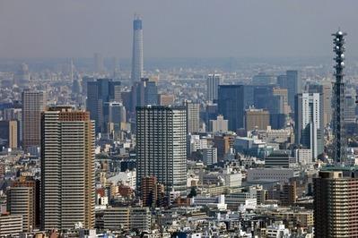 東京都庁の展望室から東京スカイツリー