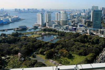 コンラッド東京から浜離宮恩賜庭園の眺め