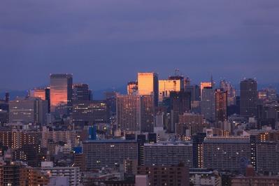 夜明けの東京超高層ビル群