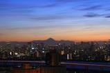 トキタワーから富士山