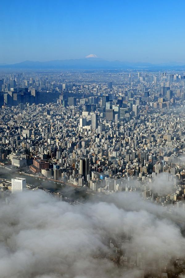 雲海と東京と富士山