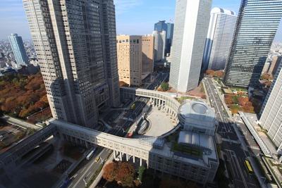 新宿NSビルから見た東京都庁第一本庁舎