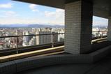 宇都宮市役所からの眺め