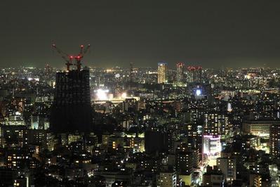 ブリリアタワー東京から東京スカイツリーの夜景