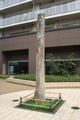ライオンズタワー府中のシンボルツリー