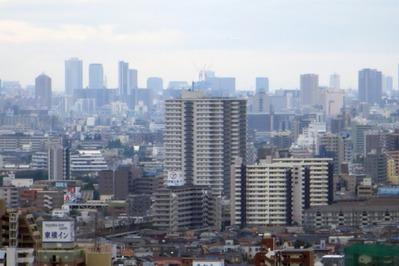 ハーモネスタワー松原から東京スカイツリー