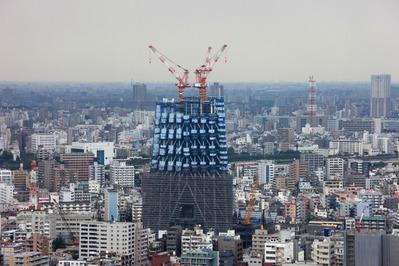 ブリリアタワー東京から東京スカイツリー