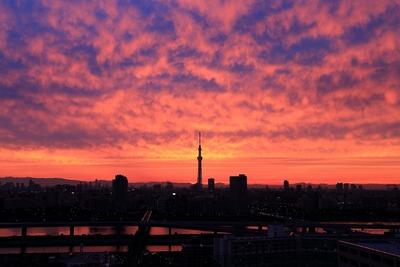東京スカイツリー方面の夕焼け