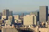 東京と謎の山