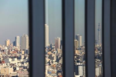 練馬区役所から見た東京スカイツリー