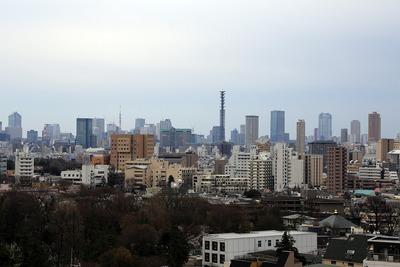 豊島区庁舎からの眺め