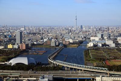 東京オリンピックが行われる夢の島周辺の空撮