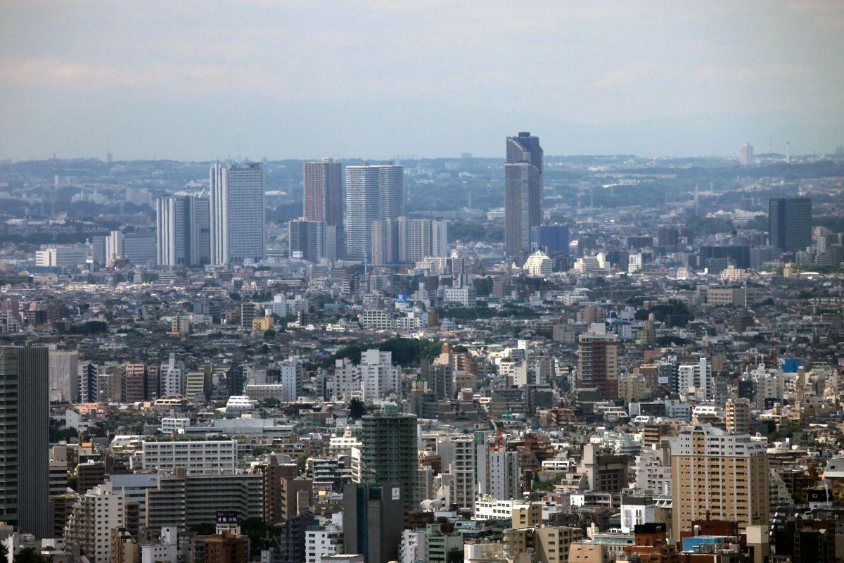 武蔵 小杉 タワー マンション