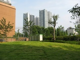 シティタワー品川の敷地からの眺め