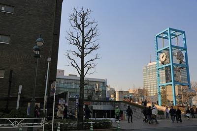 渋谷区総合庁舎と渋谷公会堂