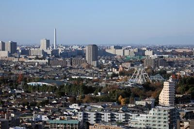 練馬区役所から見た豊島園