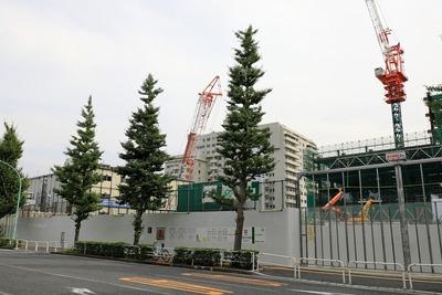 (仮称)渋谷区役所建替プロジェクト 住宅棟