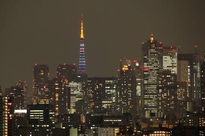 東京タワー ダイヤモンドヴェール・スペシャルレインボー