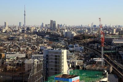 王子飛鳥山 ザ・ファースト タワー&レジデンスと東京スカイツリー
