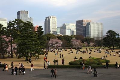 皇居東御苑の天守台からの眺め