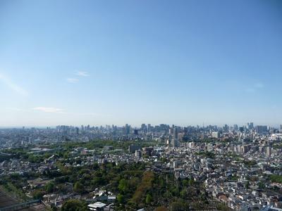ステーションガーデンタワーから東京