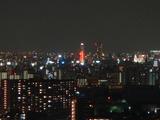 キングスクエア ザ・タワー ランドレックスからの夜景