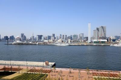 豊洲市場 屋上緑化広場からの眺め