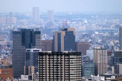 東京都庁から東京スカイツリー