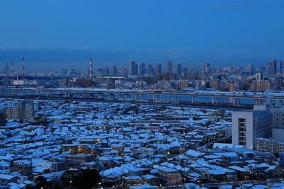 雪の東京夜景