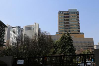 国立印刷局前から見た赤坂方面