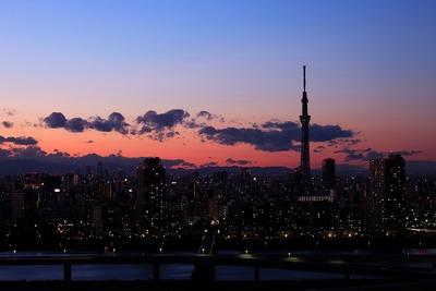東京スカイツリー方面の夕景