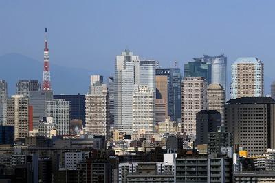 高さ315mの東京タワー