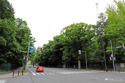 ラ・トゥール札幌伊藤ガーデン