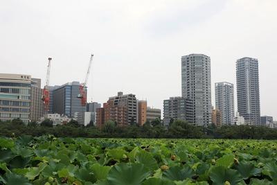 上野池之端のタワーマンション群
