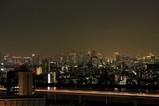 青色東京タワー 遠景