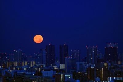 豊洲に月の入り